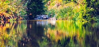 Mountain creek reflections stock photography