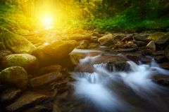Mountain creek with stones and sunlight Royalty Free Stock Photography