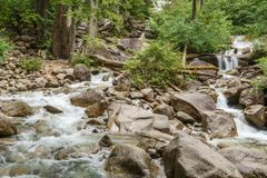 Mountain creek on a summer day in a shade of the forest. Stock Photos