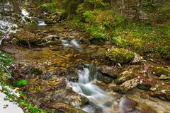 Mountain creek in Tatra mountains Royalty Free Stock Photography