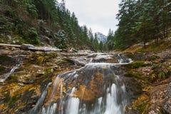 Mountain creek in Tatra mountains. Poland Stock Image