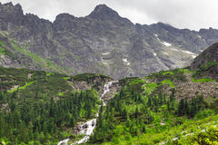 Mountain creek in Tatra National Park Royalty Free Stock Photo
