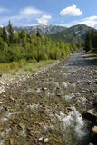 Mountain Creek - Vertical Stock Photo