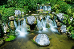 Mountain creek with waterfall Stock Images