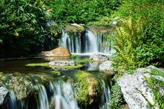 Mountain creek with waterfall Stock Photography