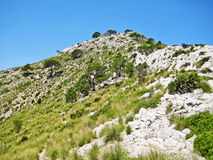 Mountain crest with grass and blue sky Stock Image