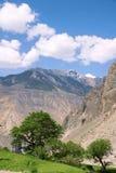 Mountain cropland Stock Photos