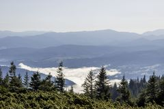 Carpathians. Mountain Stock Image