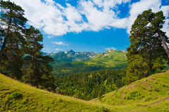 Mountain day summer Stock Photography