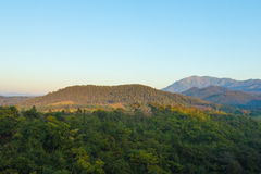 Mountain in deep forest nature view Royalty Free Stock Photos