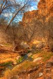 Mountain Desert Creek. Small desert creek in the winter mountains Stock Photography