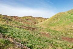 Mountain desert, plain field meadow hill with green grass and red soil Royalty Free Stock Images