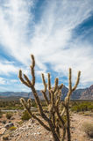 Mountain Desert Royalty Free Stock Image