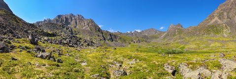 Mountain - Dinosaur. Panorama of summer alpine tundra Stock Photography
