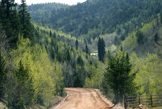 Mountain dirt road. It's a dirt road in a mountain with many trees in a rural area Stock Images