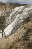 Mountain of dry, white travertine rock at Mammoth Hot Springs. Royalty Free Stock Photos
