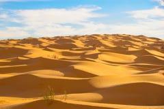 Mountain of dunes Royalty Free Stock Photos