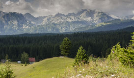 Mountain Durmitor in Montenegro Stock Images
