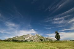 Mountain in Durmitor Parc Montenegro Stock Photography