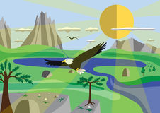 Mountain Eagle. On a background of mountains stock photography