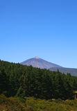 Mountain El Teide in Tenerife island Royalty Free Stock Images