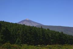 Mountain El Teide in Tenerife island Royalty Free Stock Photos