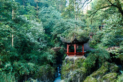 Mountain Emei Royalty Free Stock Images