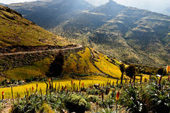 Mountain in Ethiopia. Mountains in Ethiopia, Africa, view of the mountain with a primitive road on the slope Stock Photo