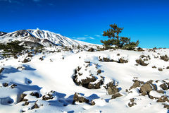 Mountain Etna in snow Royalty Free Stock Photos