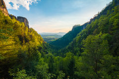Mountain exaltation of the forest Stock Image