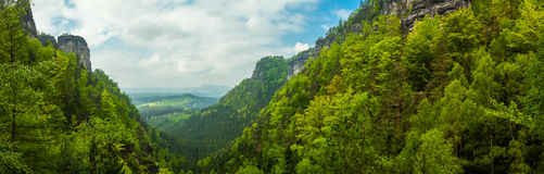 Mountain exaltation of the forest Stock Photo