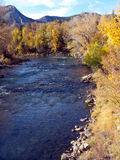 Mountain Fall. River running through Aspen and Pine in the Rocky Mountains stock image