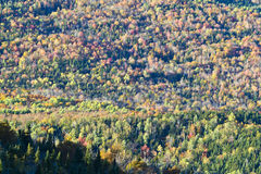 Mountain Fall Foliage Royalty Free Stock Photo