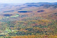 Mountain Fall Foliage Stock Image