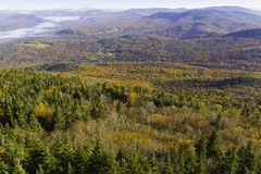 Mountain Fall Foliage Stock Photos
