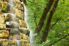 Mountain falls in wood Stock Photo