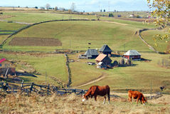 Mountain farm Stock Image