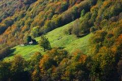 Mountain farm and fall trees. Slovenia stock photo