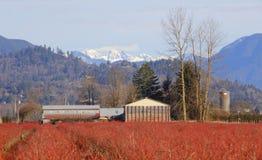 Mountain Farm Land Stock Photo