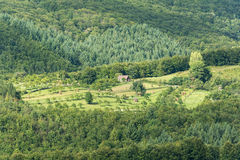 Mountain Farm Land View Royalty Free Stock Image