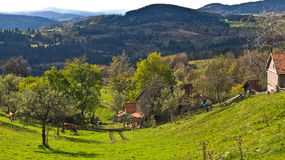 Mountain farm and landscape at autumn sunny day, Radocelo mountain Stock Image