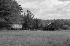Mountain Farm off the Blue Ridge Parkway, Virginia, USA. Carroll County, Virginia USA - May 19: A black and white image of working farm off the Blue Ridge stock photo