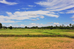 Mountain and farm. In southern Thailand stock photography