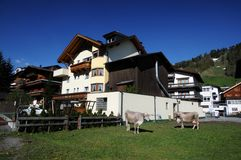 A mountain farm in  Tyrol Stock Images