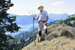 Mountain farmer with pitchfork harvesting hay Royalty Free Stock Photo