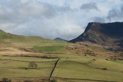 Mountain farmland. Stock Photography