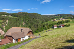 Mountain Farms in Mittelberg / Ritten Royalty Free Stock Images