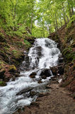 Mountain fast flowing river Shipot waterfall stream of water in. The rocks, Ukraine Stock Photos