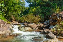 Mountain fast flowing river stream of water in the rocks.  Royalty Free Stock Image