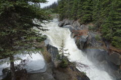 Mountain-fed rushing river. Stock Photography